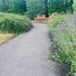 Danes garden path